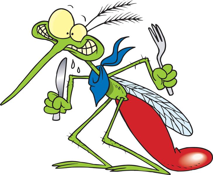 Mosquito Nick